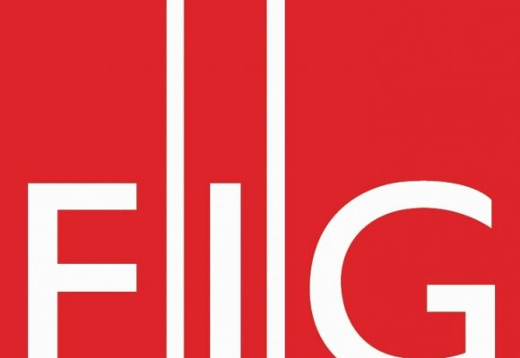 Doctorate scholarships from the FIG Foundation Denmark