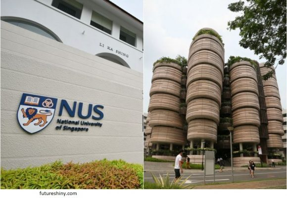 Scholarships in Singapore for Doctorate from Department of Economics of NUS, 2020