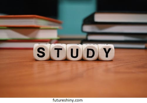 How to study and work in New Zealand?